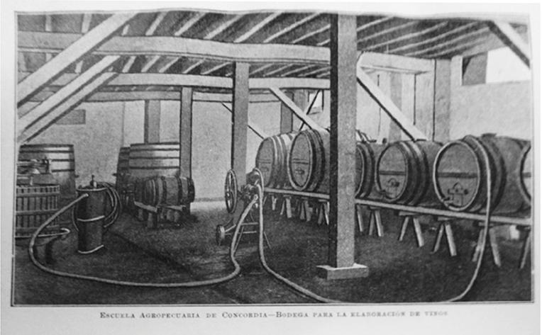 Escuela Agropecuaria de Concordia - Bodega de vinos - Blanco y Negro
