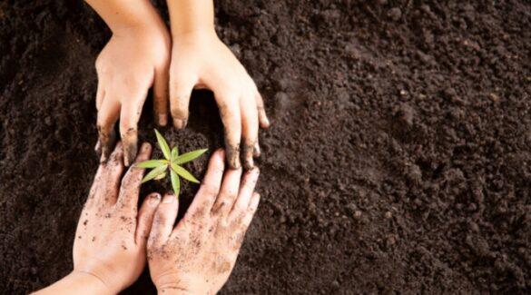 Agricultura familiar_Manos plantando en la tierra