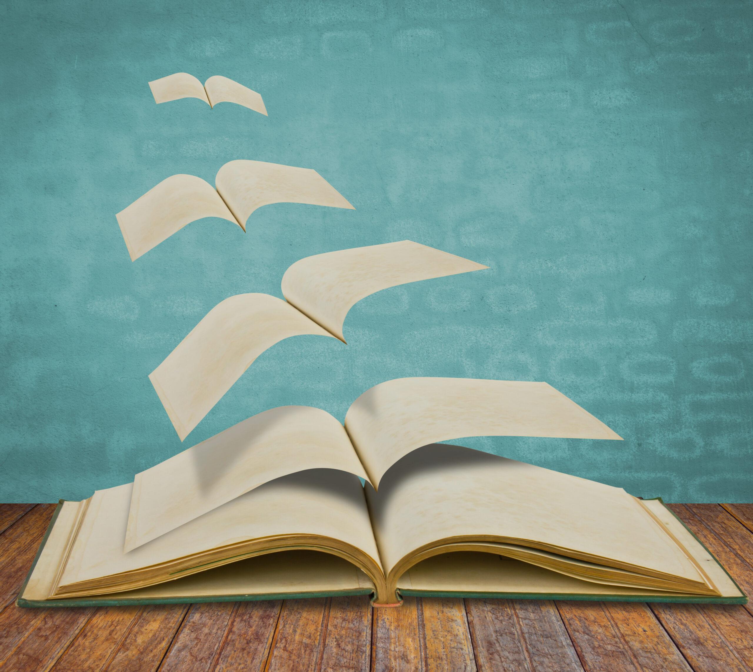 Libro_páginas