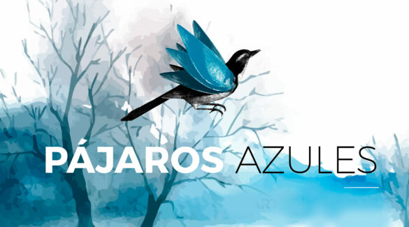 Arte de la tercera temporada del podcast Pájaros Azules